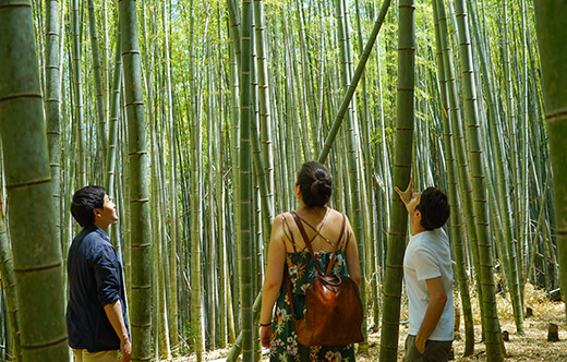 Fushimi Inari Hidden Hiking Tour