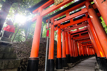 Fushimi Inari Virtual Walking Tour
